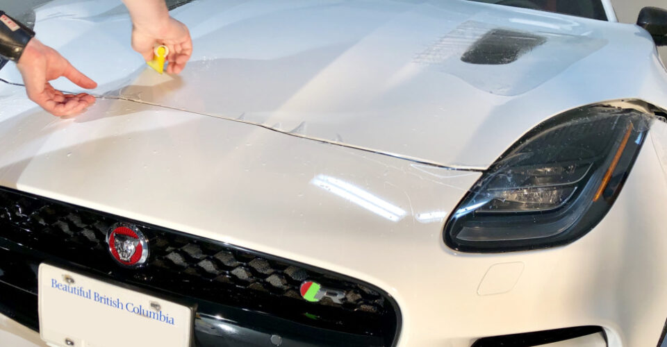 Applying clear bra paint protection film to Jaguar